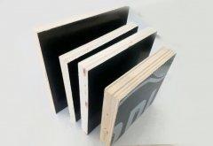广西松桉木建筑模板厂