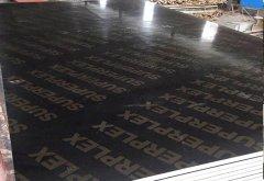建筑覆膜板1830-915mm