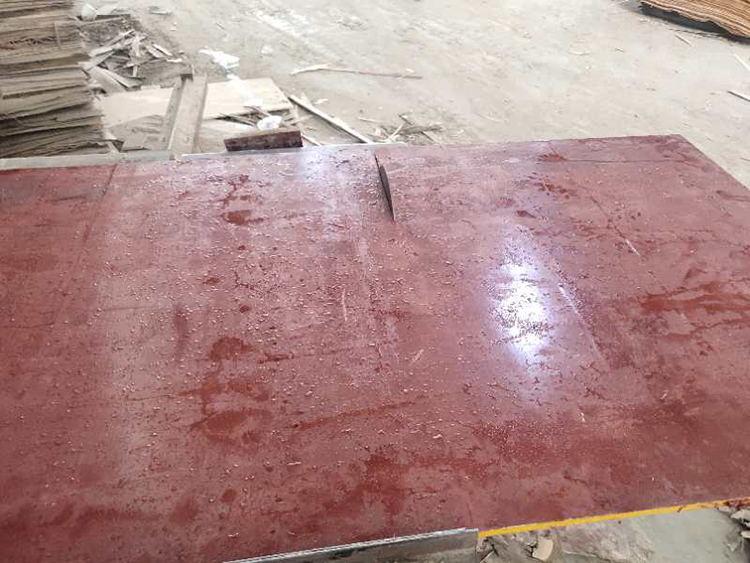 现场切开看建筑模板中的含水率是否合格
