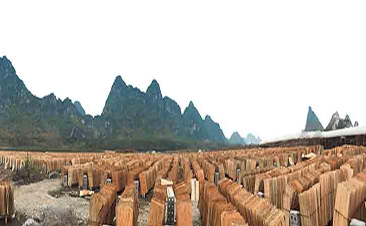 贵港模板产业园-东龙镇
