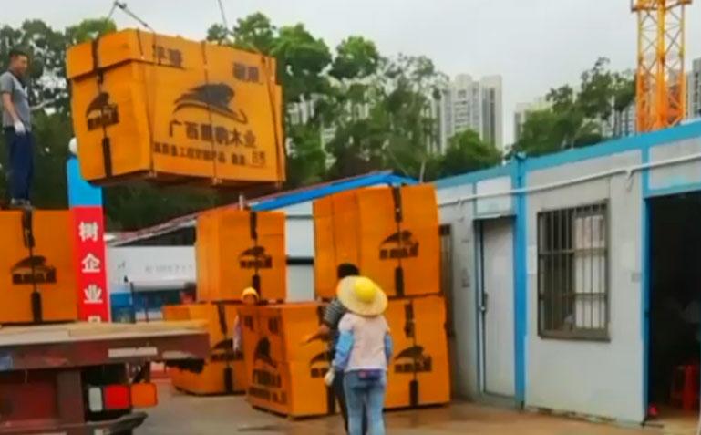 黑豹建筑清水模板